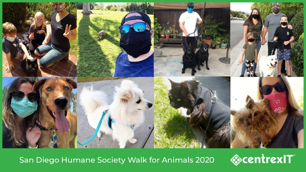San Diego Humane Society Walk for Animals